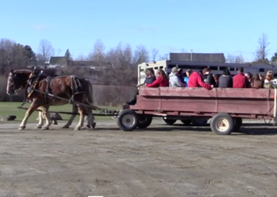 Festival of Lights 2015: Sleigh Ride
