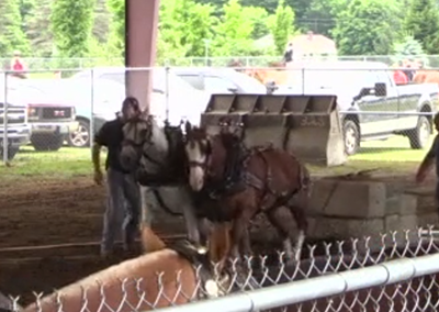 Lamoille County Field Days 2015 – Pony Pull