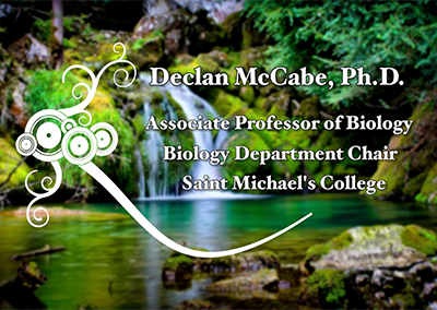 Environmental Health Speaker Series, Declan McCabe, Ph.D.