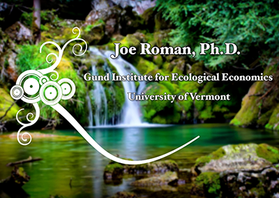 Environmental Health Speaker Series, Joe Roman, Ph.D.