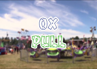 Lamoille County Field Days, 2016 – Ox Pull