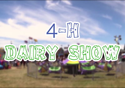 Field Days, 2016 – 4H Dairy Show